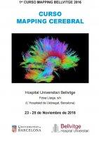 Curso Mapping Cerebral